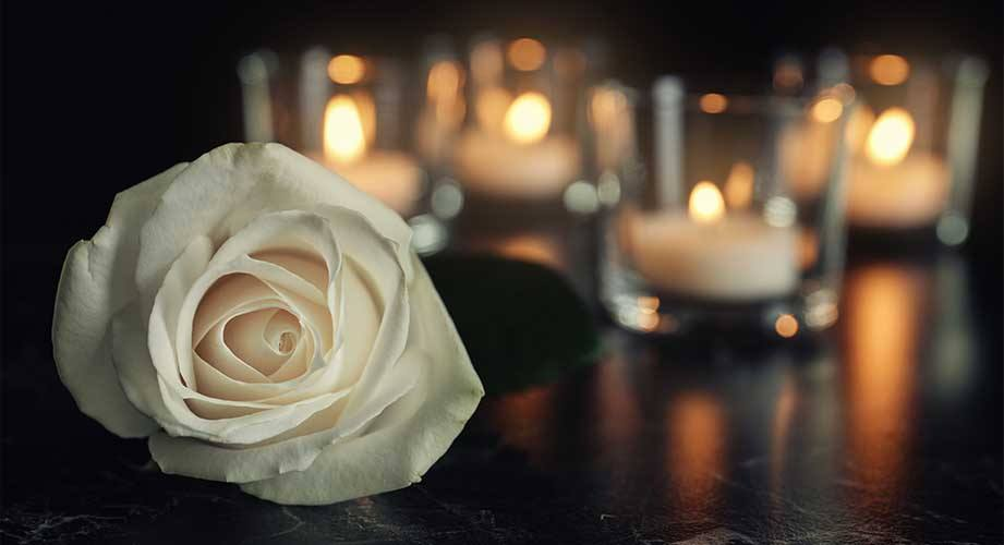 rose next to lit candles
